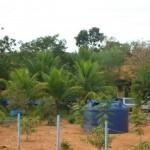 Fazenda-da-Solidariedade (5)