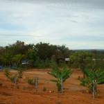Fazenda-da-Solidariedade (6)