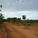Fazenda-da-Solidariedade (8)